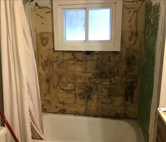 Rotted and moldy wall after tiles removed from bathroom.
