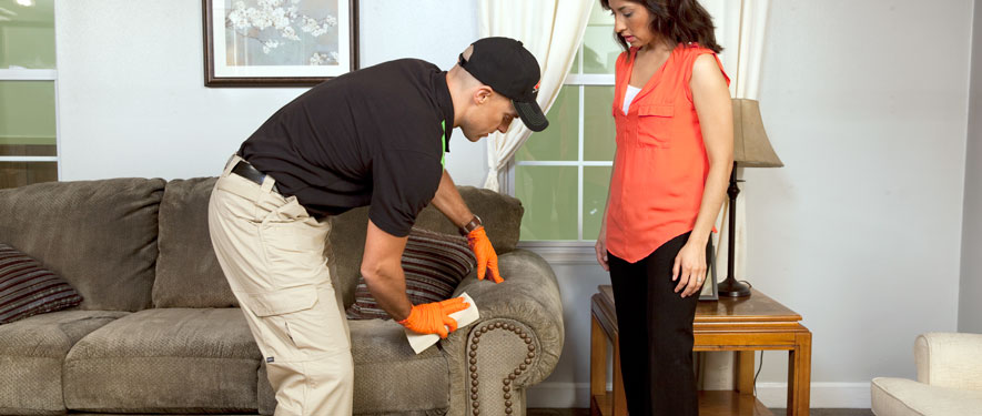Holland, MI carpet upholstery cleaning