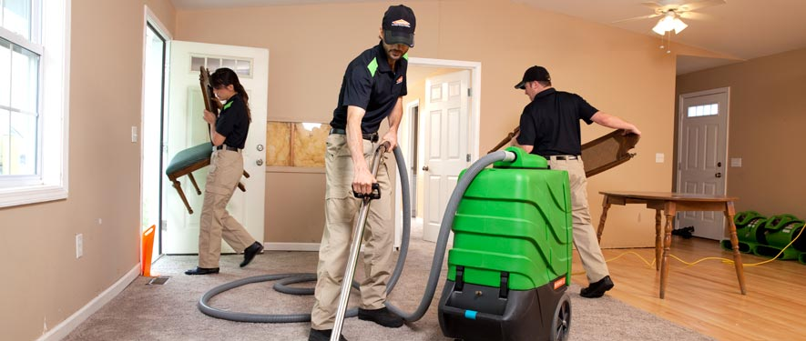 Holland, MI cleaning services